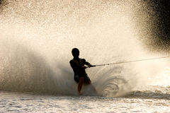 Barefoot water skier. Silhouette of a barefoot water skier with backlit water spray Stock Photo