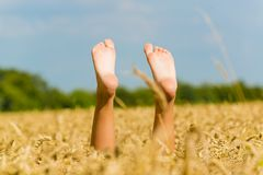Barefoot in the wheat field Royalty Free Stock Photo