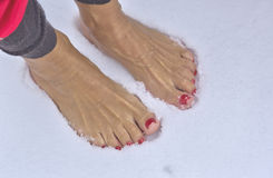 Barefoot Woman. Woman standing barefoot in fresh snow royalty free stock image