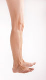 Barefoot woman legs. On a white background Stock Photo