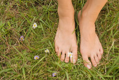 Barefoot of young woman Stock Photography