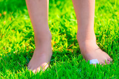 Barefooted child with a plaster on a foot Royalty Free Stock Photography