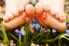 Barefooted woman's feet in flowers. Ribbon bow. Barefooted tender woman's feet with ribbon bow in snowdrops royalty free stock image