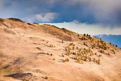 Baren Landschaft Lizenzfreie Stockbilder