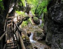 Barenschutzklamm - klyfta i Österrike arkivfoto