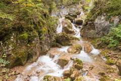 Barenschutzklamm. The most impressive and the best developed gorge in Styria, Austria Stock Images