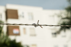 Barfbed wire Royalty Free Stock Photo