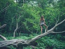 Barfota anseende för ung kvinna på stupat träd Royaltyfria Bilder