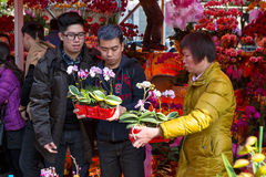 Bargain in flower fair. The buyer is bargaining with the seller in the lunar new year flower fair, Guangzhou of China Stock Photos