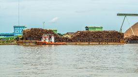 Barge full of timber as raw material for wood chip industry royalty free stock image