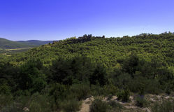 Bargeme Castle rising above the thickly forested Var Royalty Free Stock Photography