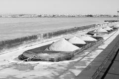 Bargues van ijzer met zout royalty-vrije stock foto