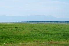 barguzin krajobrazowa Russia lato dolina Zdjęcie Stock