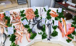 Fresh various seafood in Pescheria shop. Bari, Italy. royalty free stock images