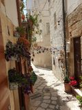Old town street with flowers stock image
