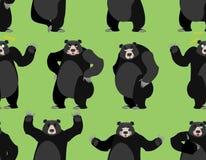 Baribal无缝的样式 美国黑熊装饰品 设置wi 皇族释放例证