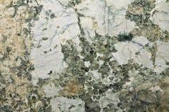 Baricato polerade granit Royaltyfria Bilder
