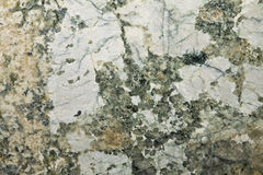 Baricato polished granite Royalty Free Stock Images