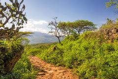 Barichara to Guane Path Royalty Free Stock Photo