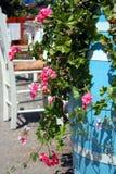 Baril bleu de fleurs roses en Grèce Photographie stock libre de droits