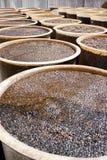 Baril de haricot de soja images libres de droits