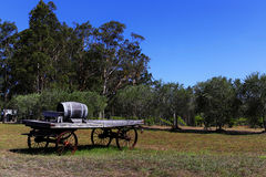 Baril de vin de chêne sur un vieux chariot en bois Photos libres de droits