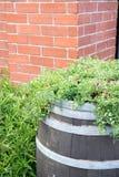 Baril en bois de fleur avec le fond de brique photo libre de droits