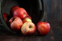 Baril intime plein des pommes rouges sur le fond grunge en bois Photos stock
