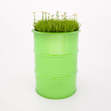 Baril vert de bio carburant Photo stock