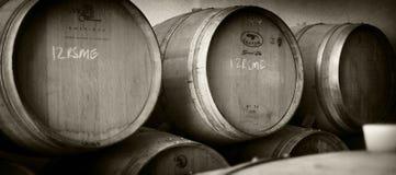 Barili di vino Fotografie Stock