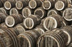 Barili di vino della quercia Fotografia Stock