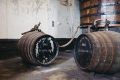Barilotti del whiskey di Clynelish dentro la distilleria di Brora, Scozia Fotografia Stock Libera da Diritti