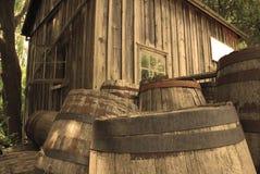 Barilotti del whisky Immagini Stock