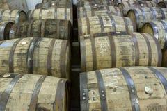Barilotti della quercia nella distilleria del bourbon fotografia stock