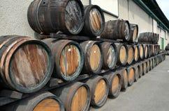 Barilotti di legno per fotografia del vino o del whiskey Fotografie Stock Libere da Diritti