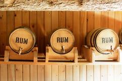Barilotti di legno per la conservazione del rum Fotografie Stock Libere da Diritti