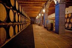 Barilotti di vino Fotografia Stock