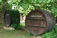 Barilotti di vino Immagine Stock