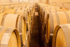 Barilotti di vino della quercia Fotografie Stock Libere da Diritti