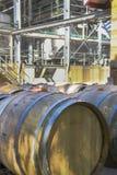 Barilotti di vino della quercia in una vigna fotografie stock libere da diritti