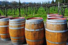 Barilotti di vino fuori di Napa Immagine Stock