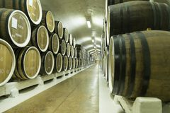 Barilotti di vino immagazzinati nel seminterrato Immagine Stock