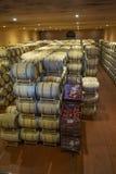 Barilotti di vino nella cantina della cantina Barilotti di vino nelle volte del vino Produttore: Antinori Bolgheri, Toscana, Ital fotografie stock libere da diritti