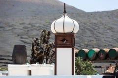 Barilotti di vino sulle viti del fondo e sulle montagne, Lanzarote Fotografie Stock