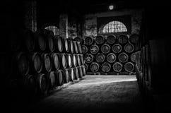 Barilotti di vino in Tio Pepe fotografia stock libera da diritti