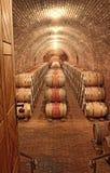 Barilotti di vino in una fila Immagine Stock Libera da Diritti