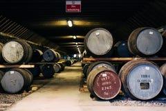 Barilotti di whiskey dentro il magazzino della distilleria di Brora in Scozia, whiskey raro di Brora nella parte anteriore Immagini Stock Libere da Diritti