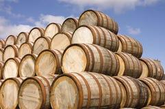 Barilotti nella distilleria Fotografia Stock Libera da Diritti