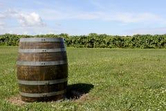 Barilotto di vino Immagini Stock Libere da Diritti