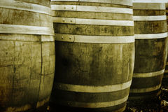 Barils de vin Image stock